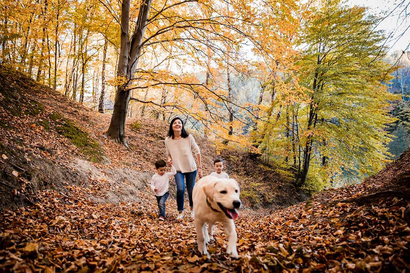 別荘地で犬と遊ぶ家族
