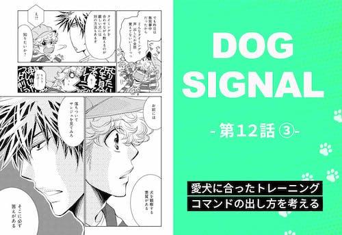 『DOG SIGNAL』12話目 3/4