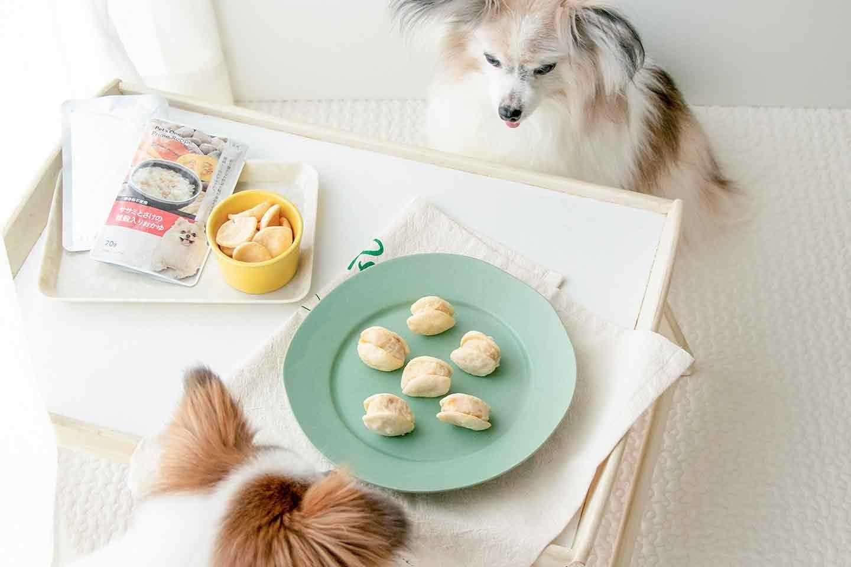 """【夏の水分補給】愛犬用サンドアイスの作り方!話題の""""マリトッツォ""""風おやつを自宅で簡単にひんやり再現♡"""