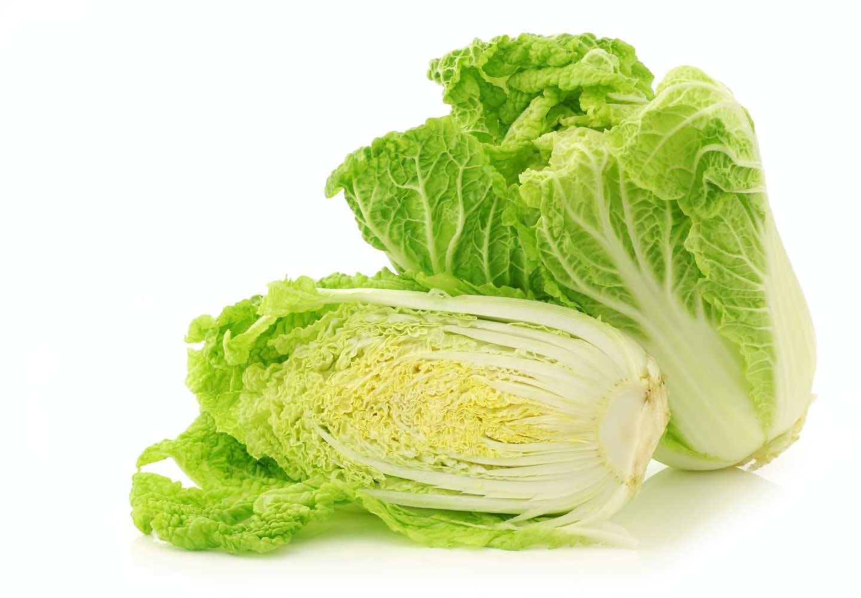 犬は白菜を食べても大丈夫!、白菜断面