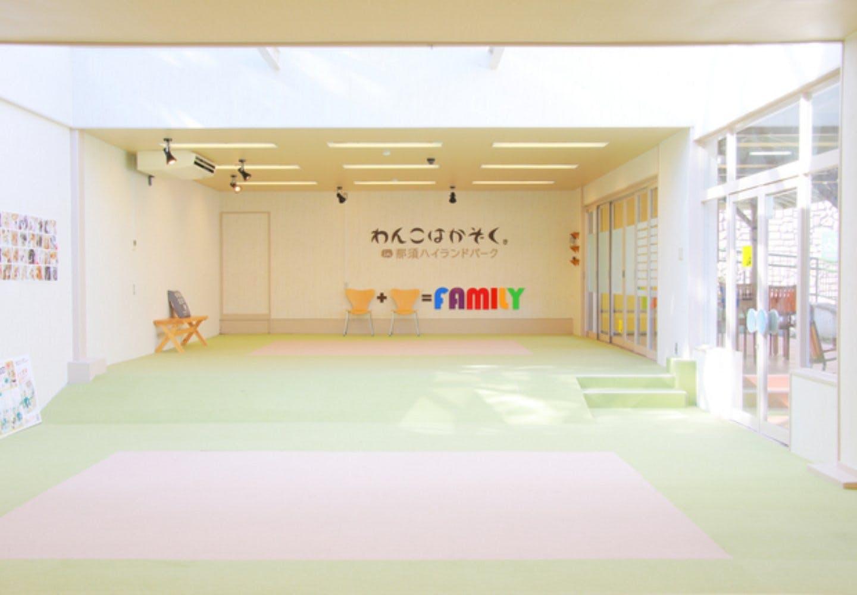 関東圏の室内ドッグラン10選
