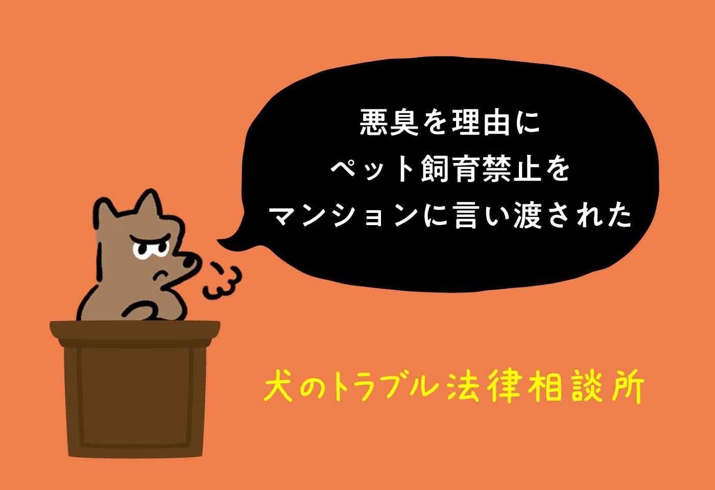 【トラブル】糞尿の悪臭を理由にペット飼育禁止をマンションの管理組合から言い渡された!