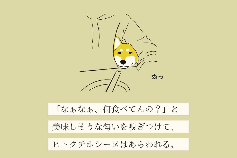 ヒトクチホシーヌの生態《変な犬図鑑005》