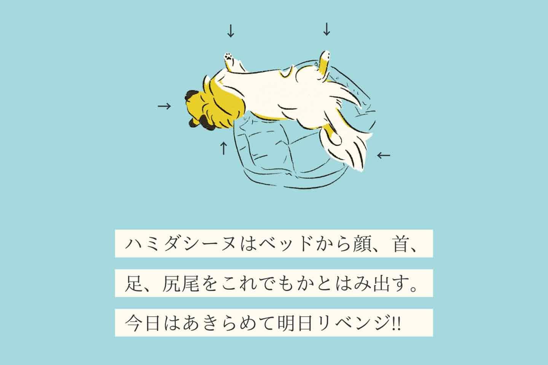 ハミダシーヌの生態《変な犬図鑑007》