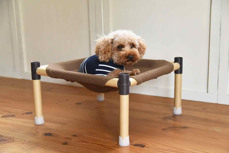 お手軽な愛犬用ドッグコットの作り方 愛犬チロル トイプードル