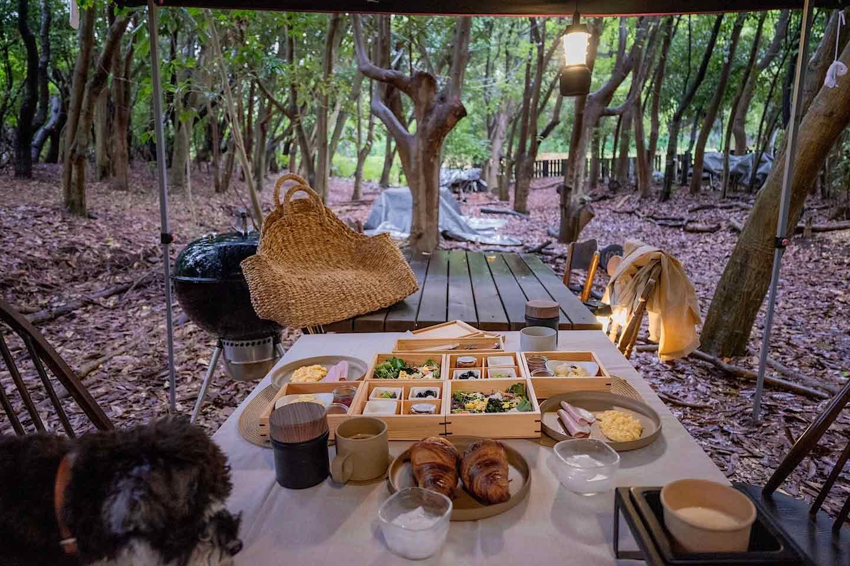 【朝食】最後まで優雅に!愛犬と過ごす健康的な朝の過ごし方