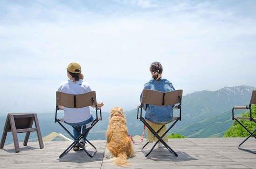 【長野】愛犬と一緒に楽しめる「⽩⾺岩岳マウンテンリゾート」に新展望エリアがオープン!