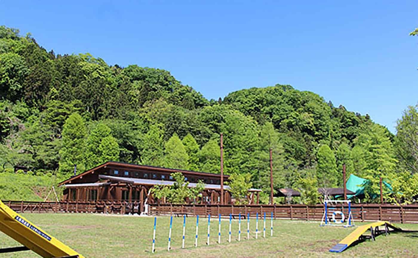 Wonderful Nature Villageのドッグランとアジリティ