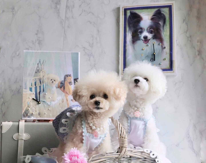 愛犬デザインのオリジナル時計の完成 月金具をつけて壁掛け時計式も可能