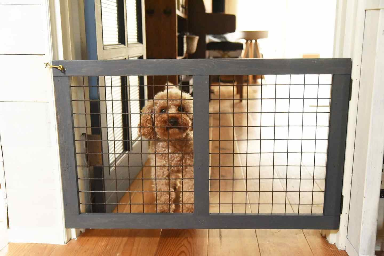 【作り方】ドア枠に固定できる愛犬のための開閉ゲート扉 完成