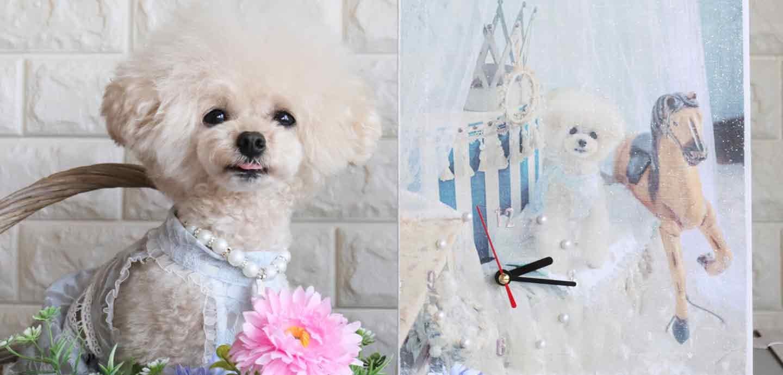 【100均リメイク】愛犬デザインのオリジナル時計の作り方♪思い出の写真が実用的なインテリアに!