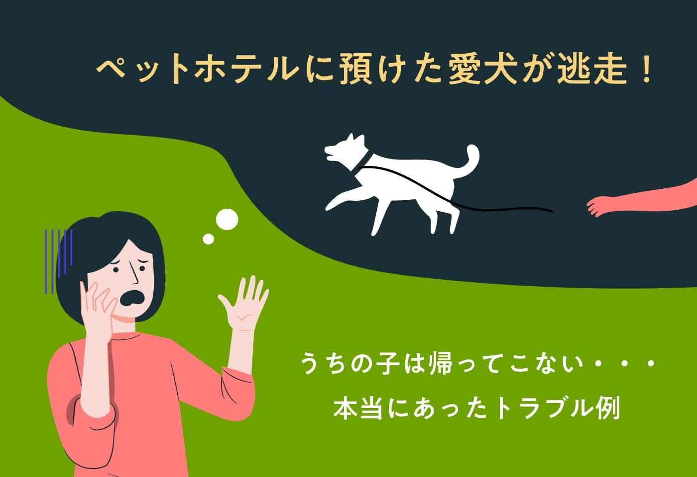 【法律】ペットホテルに預けた愛犬が逃走!サロンに預けた愛猫が尻尾を切られた!施設側の責任は?