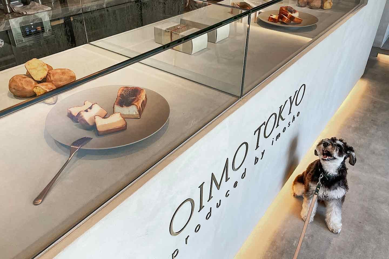 『& OIMO TOKYO CAFE 中目黒』全てのメニューにサツマイモを使用 ミニチュアシュナウザー