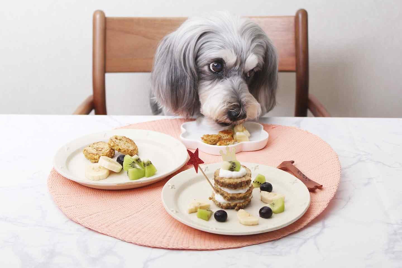 【便秘予防】愛犬用ヘルシーパンケーキの作り方!バナナとオートミールを使った食物繊維たっぷりメニュー