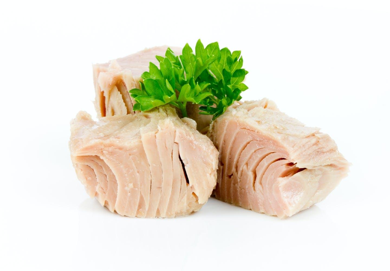 犬はマグロを食べても大丈夫!適量やメリット、与える際の注意点を解説【獣医師監修】
