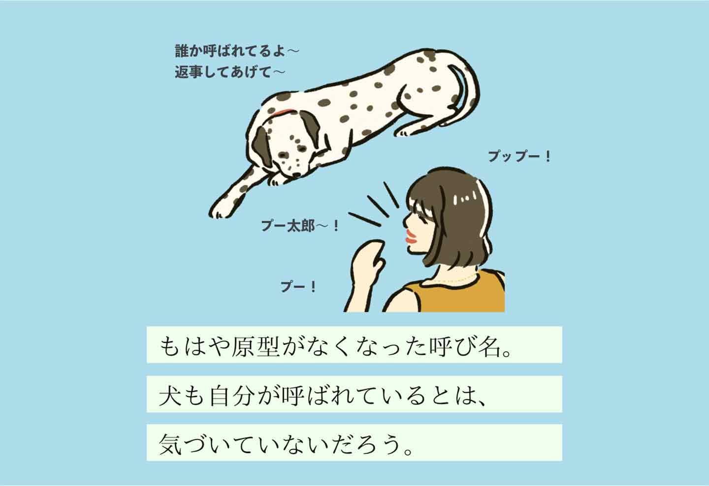 ナマエチャントヨバヌシの生態《変な飼いヌシ図鑑004》