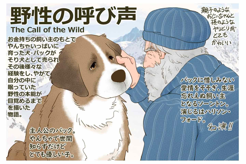 【犬映画ノススメ】『野性の呼び声』はもはや犬が主役だった!ペットからそり犬への冒険成長ストーリー