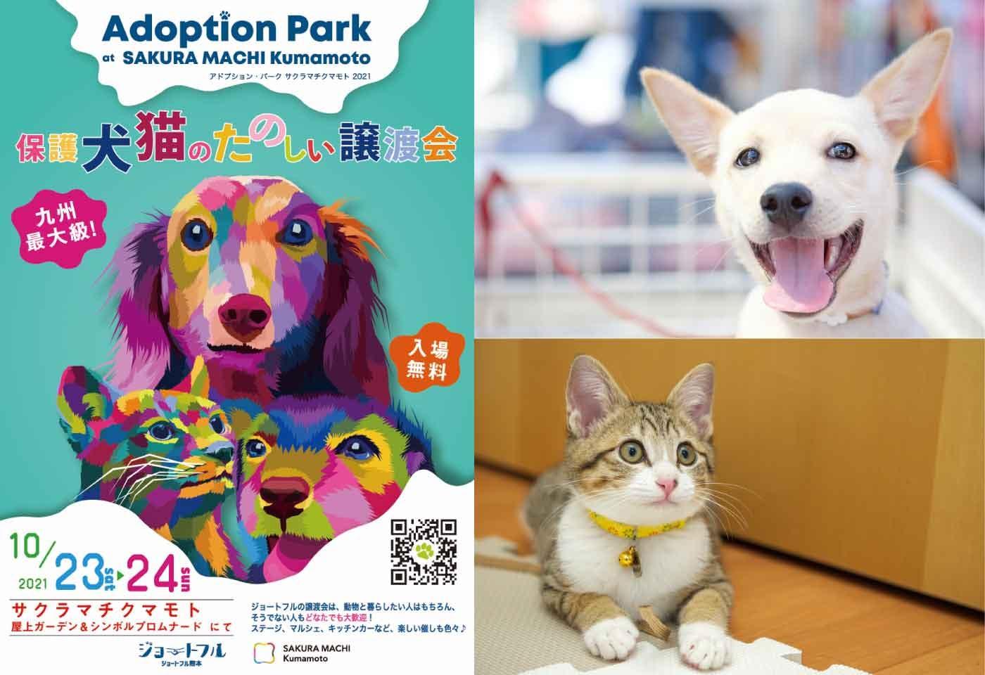 ADOPTION PARKって何?九州最大級の楽しい保護犬猫の譲渡会が「サクラマチクマモト」で開催!