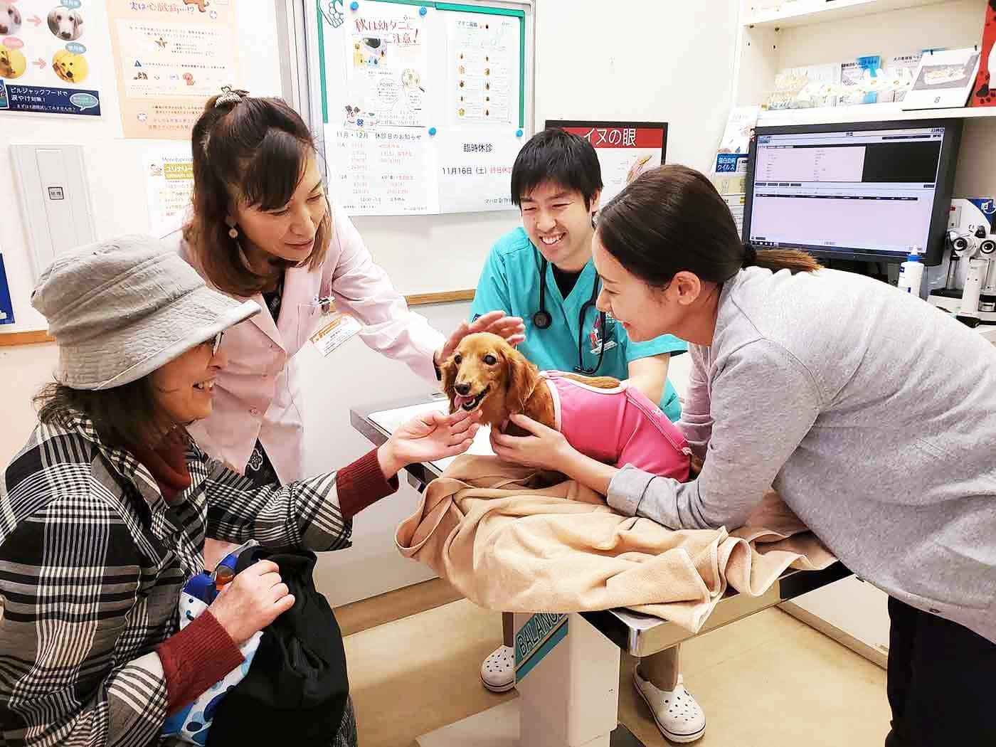 愛犬の余命宣告も恐れない!飼い主のペットロスもケアする動物医療「グリーフケア」がすごい!