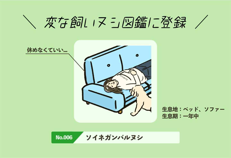 ソイネガンバルヌシの生態《変な飼いヌシ図鑑006》