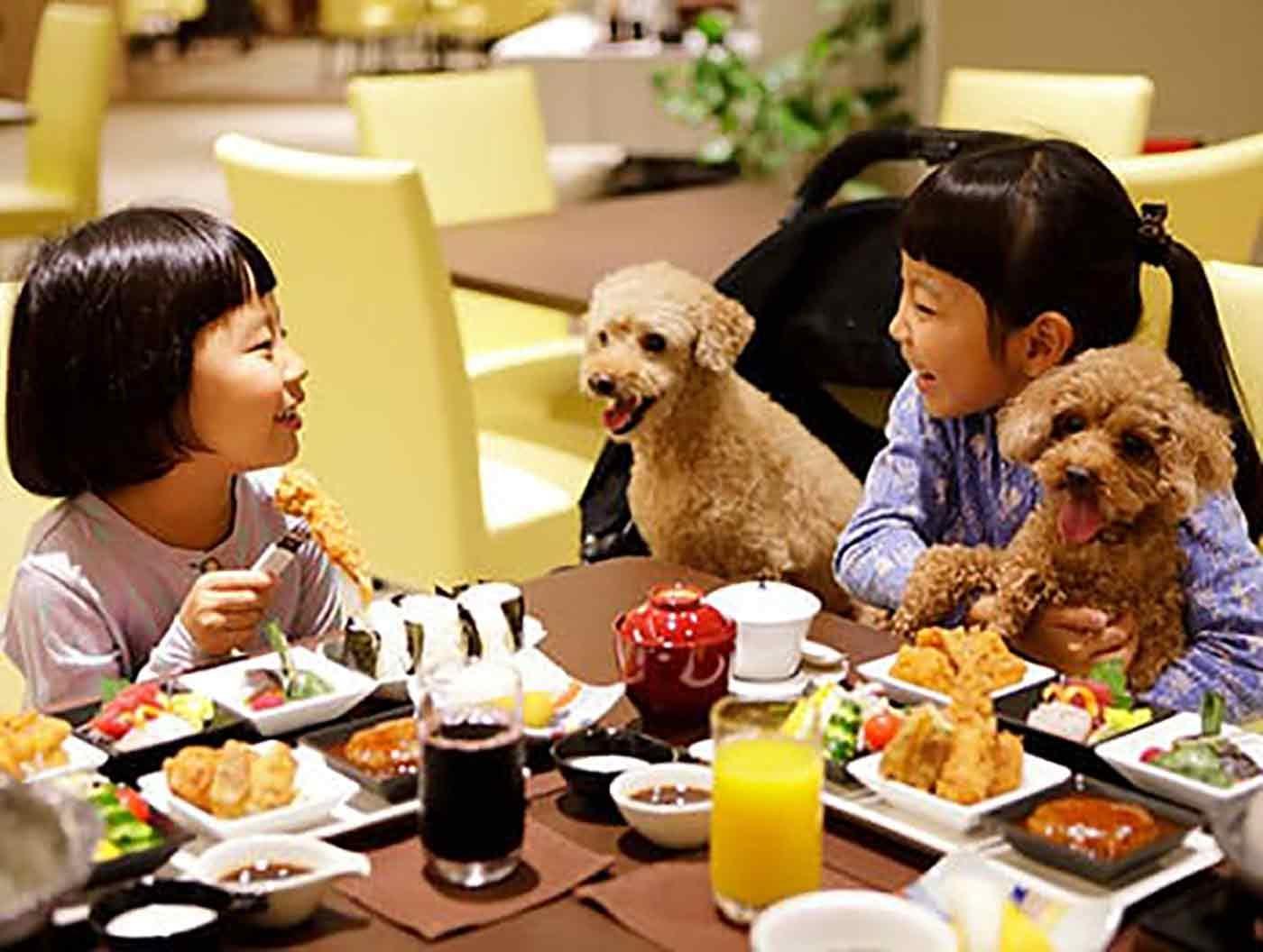 レジーナリゾート 鴨川で食事をする子どもたちと愛犬のトイプードル