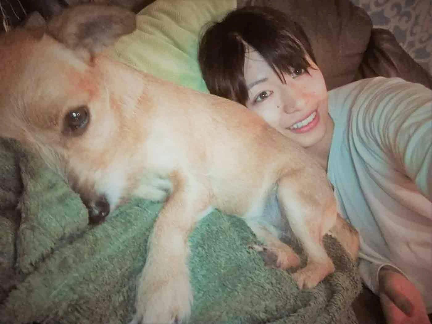 野原さんと犬