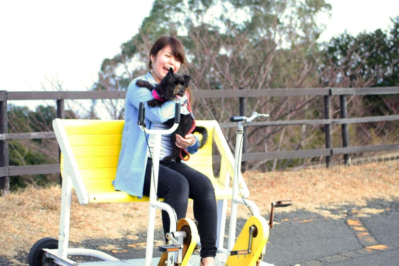 愛犬と乗れるアトラクション「おもしろ自転車」