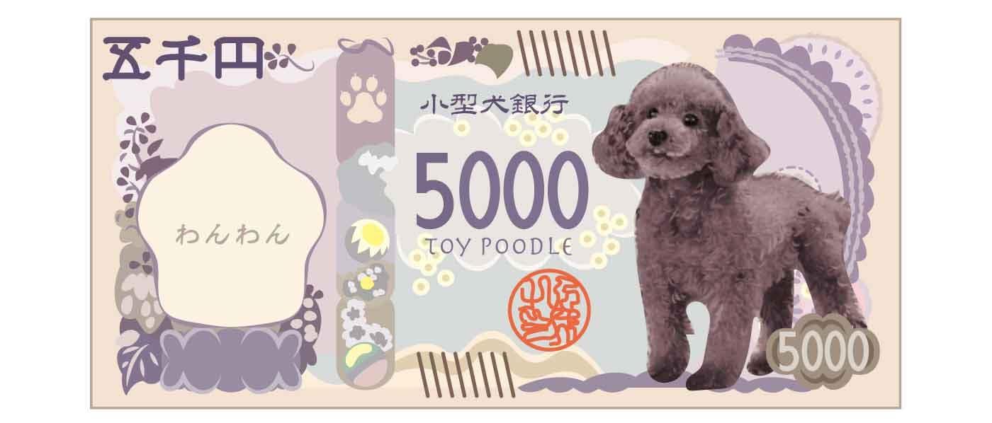 トイプードルが印刷された5千円札のイメージ