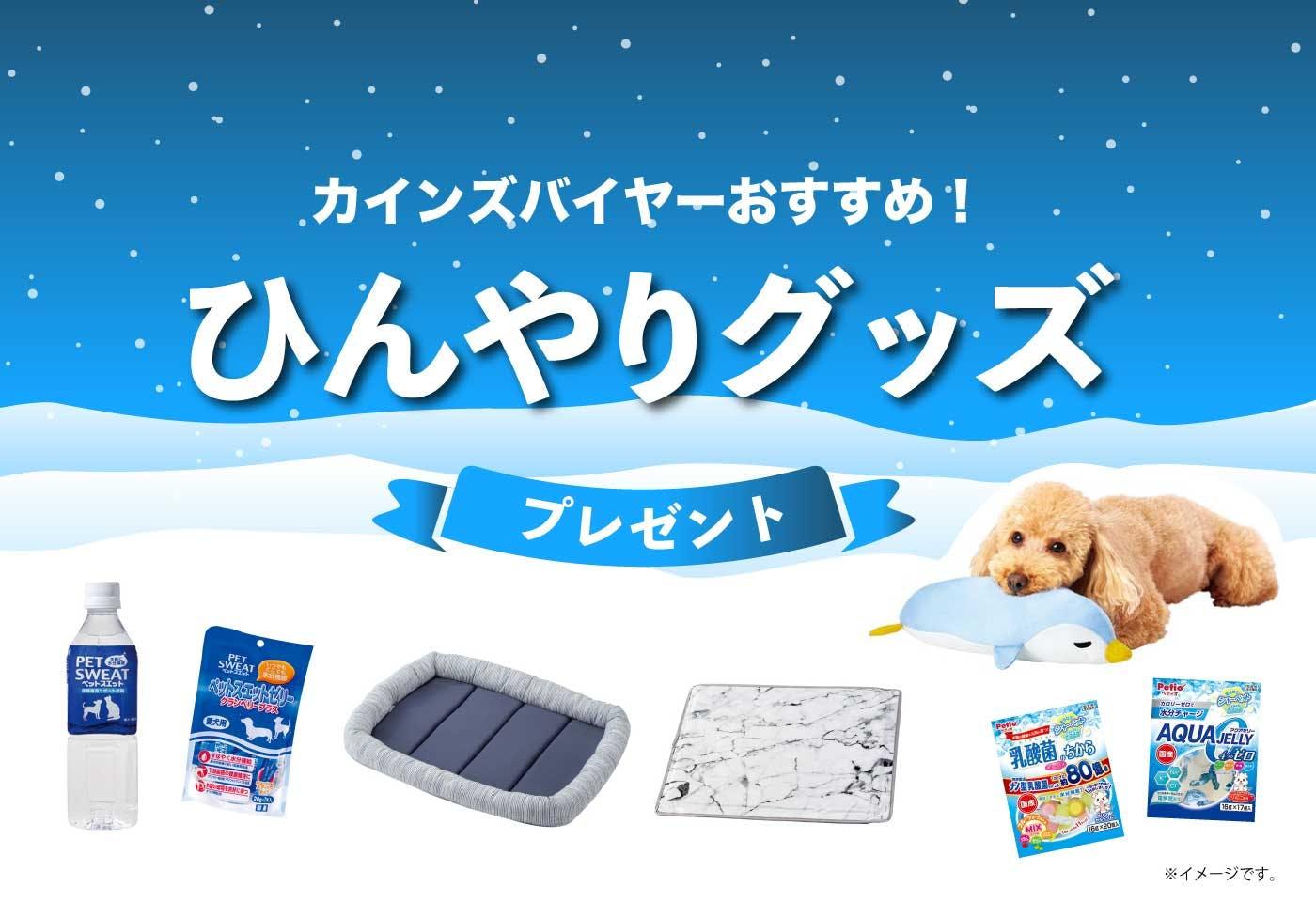 「ひんやりグッズ」プレゼント!愛犬が暑い夏を快適に過ごすためのアイテムをゲットしよう!