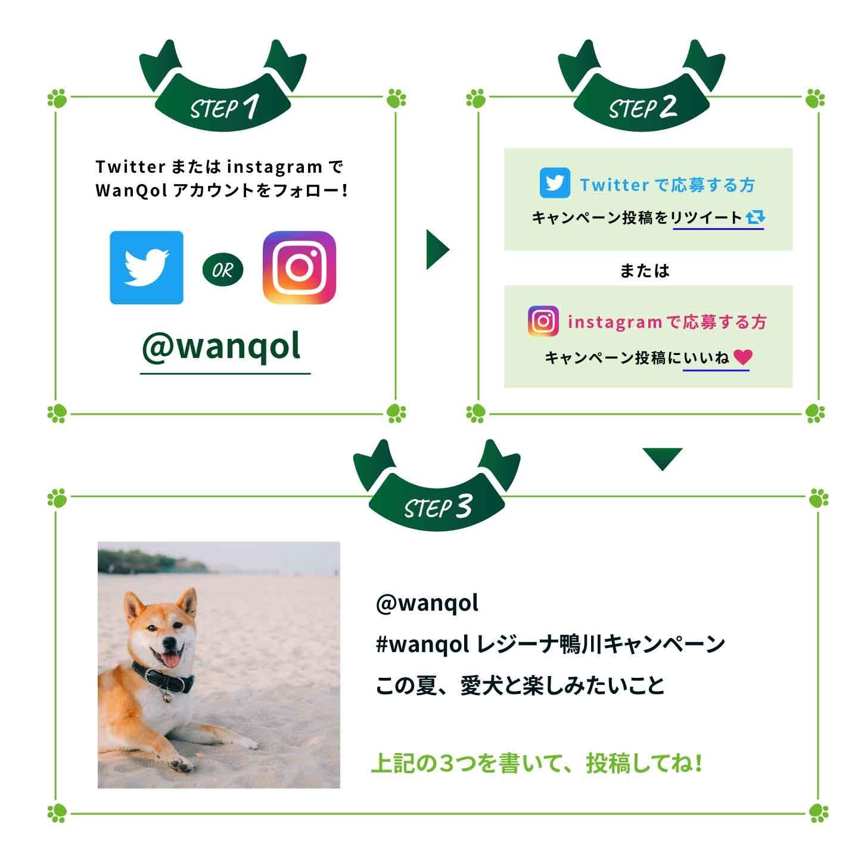 【宿泊ご招待】レジーナリゾート鴨川に愛犬と泊まれるキャンペーンを開催