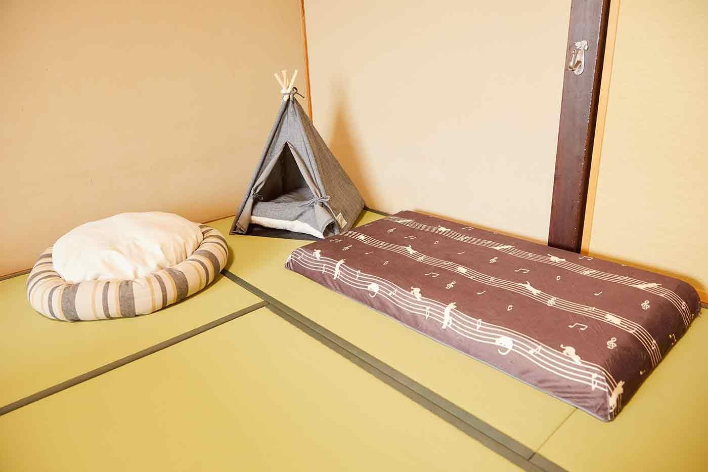 カインズのペットベッド、クッション、ティピーテント