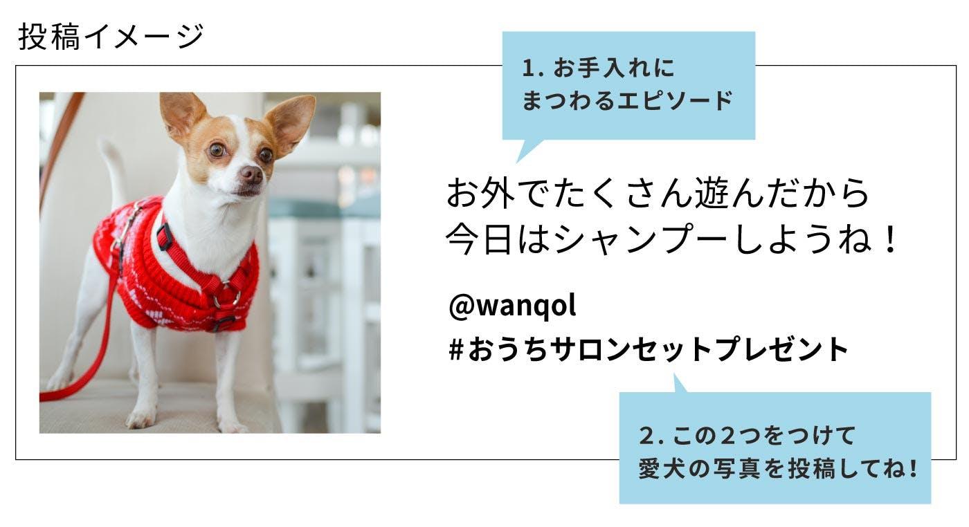 おうちサロンセットキャンペーン参加投稿の内容例