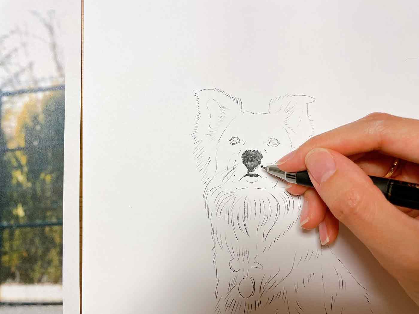 愛犬の顔の部分を塗っているところ