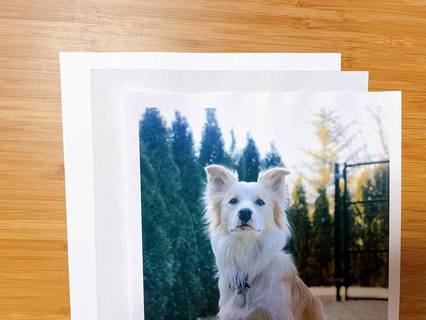 画用紙、カーボン紙、写真を重ねたところ