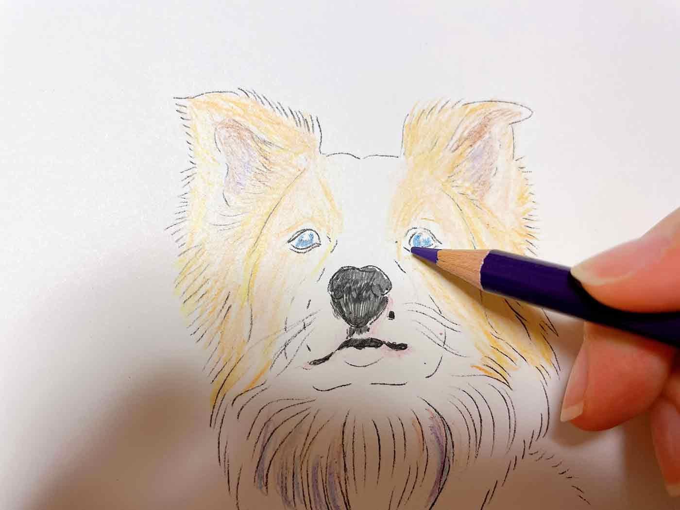 犬の目を塗っているところ