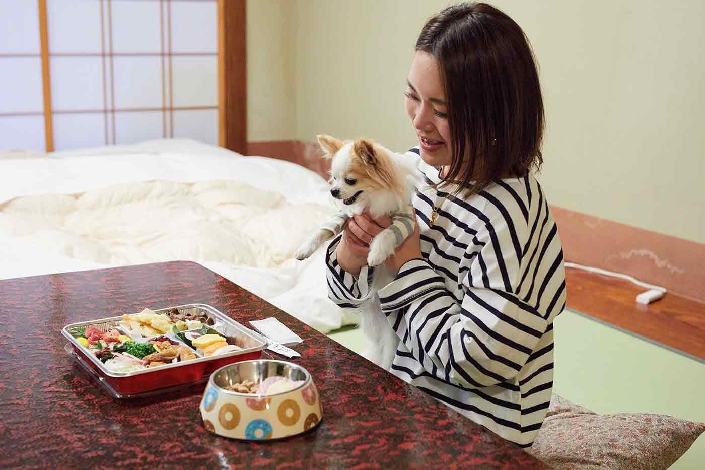 お部屋で食事をするチワワのこひめちゃんと飼い主の中原さん