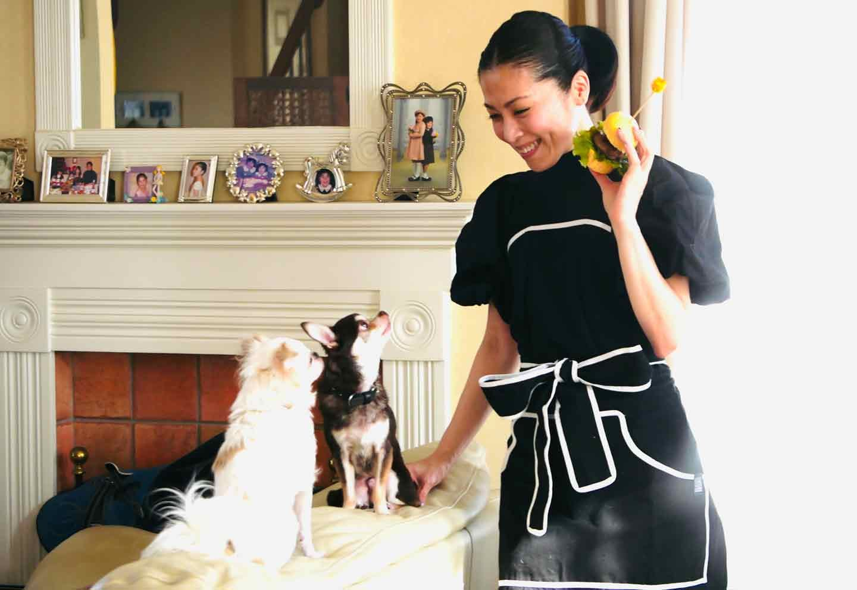 【簡単ヘルシー】お豆腐でつくる蒸しパン♪栄養価バッチリの安心おやつ《愛犬手作りごはんレシピ》