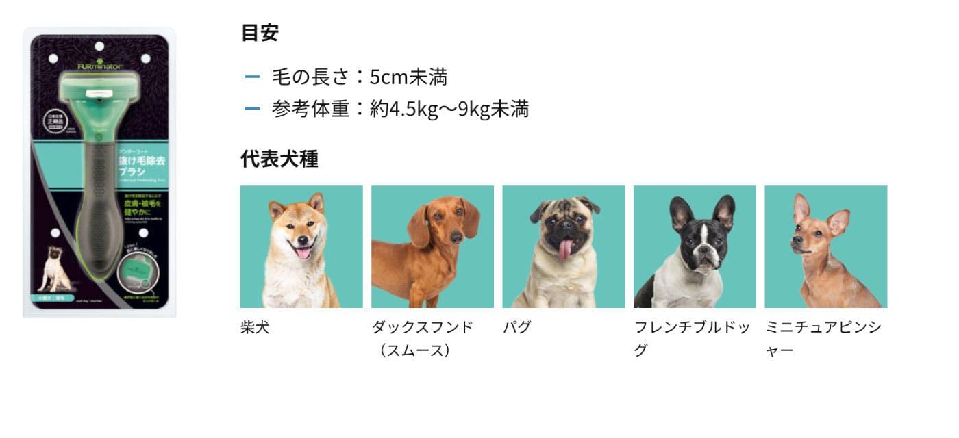 柴犬・ダックスフンド・パグ・フレンチブル