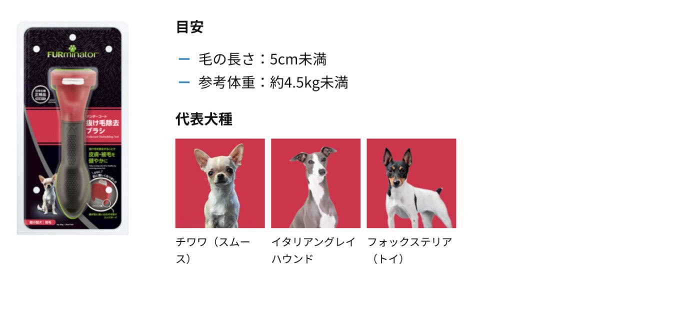 超小型犬 チワワ(スムース) イタリアングレイハウンド フォックステリア(トイ) チワワ(ロング) パピヨン チン